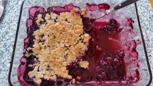 Blueberry Crisp--half eaten before I could even take a photo!