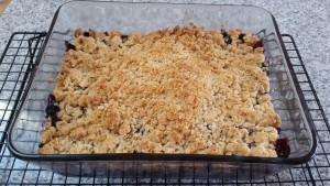 Cooked Blueberry Crisp